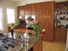 Contemporary Oak Kitchen Cabinets Kitchen Wondrous Replace Kitchen Cabinet Door Featuring Teak