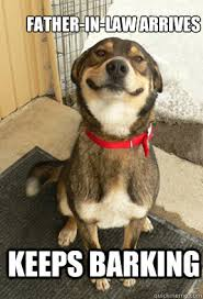 Law Dog Meme - father in law arrives keeps barking good dog greg quickmeme
