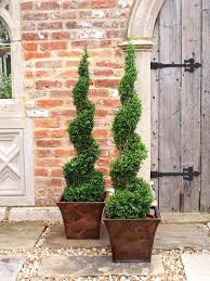 25 unique topiary decor ideas on pinterest home decor topiaries