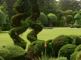 What Is A Topiary Pearl Fryar U0027s Topiary Garden A Cut Above Average Diy