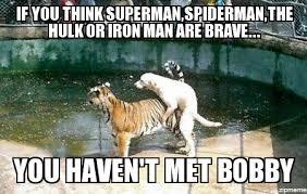 Tiger Meme - dog humping tiger weknowmemes generator
