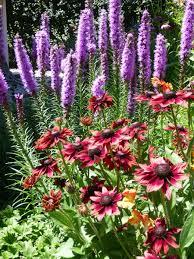 flowers laramie garden club