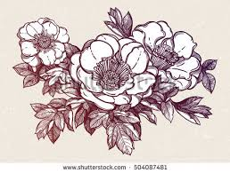 flowers isolated vector illustration template card stock vector
