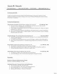 resume format 2013 sle philippines payslip 50 fresh resume format for mis profile resume writing tips
