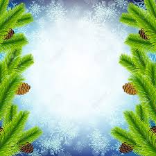 vector illustration of christmas tree branch on snowflake texture