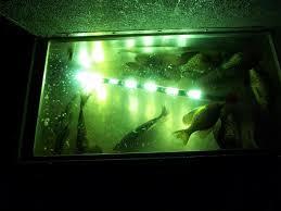 crappie lights for night fishing night fishing