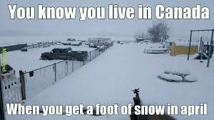Canada Snow Meme - the canadian struggles meme by thebobbuilder memedroid