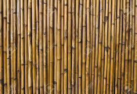 Unique Wall Patterns Bamboo Walls With Unique Patterns Stock Photo Picture And