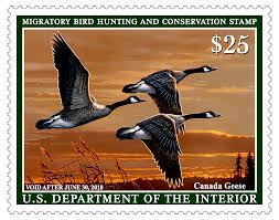 What Does The Interior Department Do U S Fish And Wildlife Service