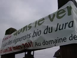 La Suite Dans Le Vignoble Du Jura Proche Le Nez Dans Le Vert Le Premier Salon Des Vins Bio Du Jura