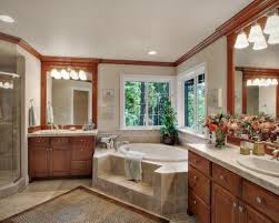 Master Bathroom Ideas Houzz by Bathrooms With Jacuzzi Designs Master Bathroom Jacuzzi Design