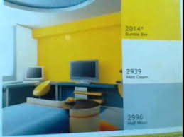 nerolac room colours youtube