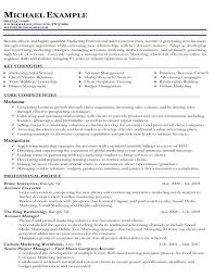Free Chronological Resume Template Chronological Resume Template Free Resume Template And