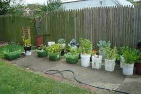 potted vegetable garden ideas pictures ideas for potted