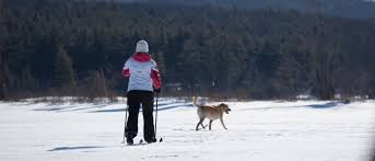 6 reasons to try cross country skiing tupper lake adirondacks