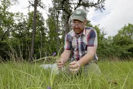 plants native to arkansas fewer students study botany more plant collections closing the