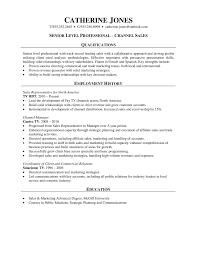 salesman resume examples cosmetic sales resume sample template cosmetic sales resume sample