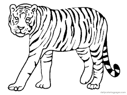 Tiger Animal Coloring Pages Bestcameronhighlandsapartment Com Coloring Pages Tiger