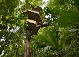 Go out on a limb Costa Ricas best tree houses