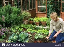 being an urban gardener creating a city vegetable garden tips for