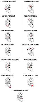 types of earrings for women best 25 3 ear piercings ideas on ear peircings