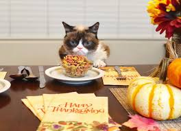 grumpy cat on happy thanksgiving no just don t forget