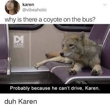 Karen Meme - karen why is there a coyote on the bus dank memeology probably