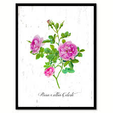 purple rose flower framed canvas print floral home decor wall art