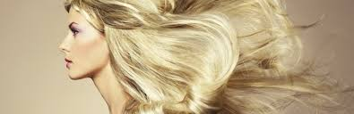 easihair extensions let your hair with easihair pro extensions langaro