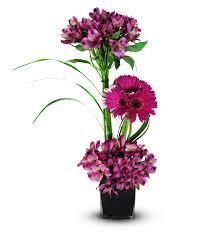 berkeley heights florist berkeley heights nj flower delivery