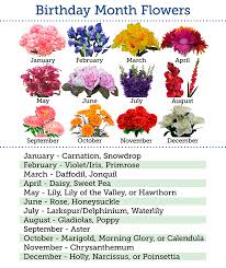 flowers of the month flowers by month birthday flowers month balsa circle