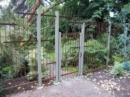 deer proof garden fence fence designs and ideas deer proof fence