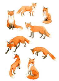 imagen relacionada cats u0026 stuffs pinterest foxes tattoo and