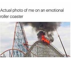 Roller Coaster Meme - memes that perfectly describe living with anxiety during the