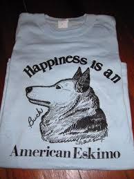 american eskimo dog vector 65 best american eskimo dogs images on pinterest american eskimo