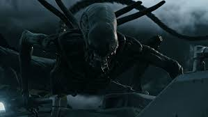 xenomorph xx121 alien xenopedia fandom powered by wikia