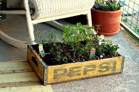 Table Top Herb Garden 5 Recycled Diy Herb Gardens U2014 Eatwell101