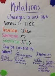 mendelian genetics dominant and recessive traits science ideas