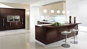 hypnotizing sample of kitchen cabinet furniture lovely fun kitchen