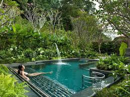 Natural Backyard Pools by 43 Best Natural Pools Images On Pinterest Natural Pools Natural