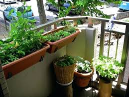 Ideas For Balcony Garden Balcony Gardens How To Create A Paradise Balcony Garden Balcony