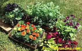 flower and vegetable gardening