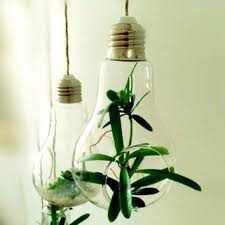 best terrarium lamp products on wanelo