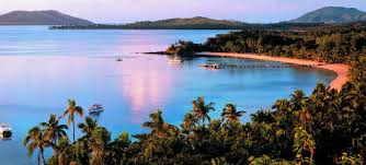 turtle island the official website of tourism fiji