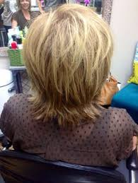 hair with shag back view heavy blonde highlights and razor cut shag on fine straight