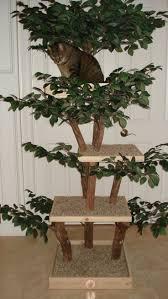 best 25 wooden cat tree ideas on pinterest cake stands