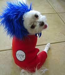 Halloween Costumes Husky Dog 30 Awesome Pet Costumes Etsy Costumes Dog Pet Costumes