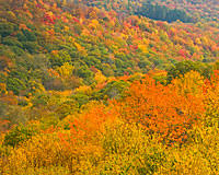 mount mitchell fall colors fall foliage highest mountain