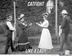 Cat Fight Meme - catfight by nedesem meme center