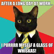 Long Day Memes - after a long day at work cat meme cat planet cat planet